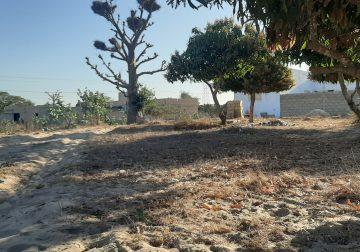 Bambilor des terrains à vendre