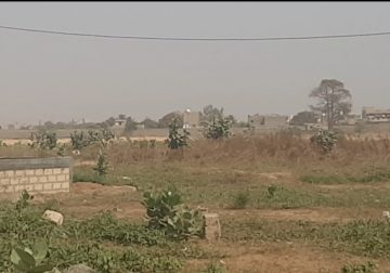 NDIAKHIRATE des terrains à vendre