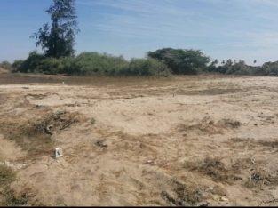 Un site de plus de 3000m² morcelé en terrains de 150m².