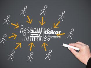 Formation professionnelle en ressources humaines
